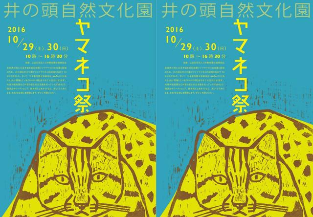 ツシマヤマネコを知る「ヤマネコ祭2016」