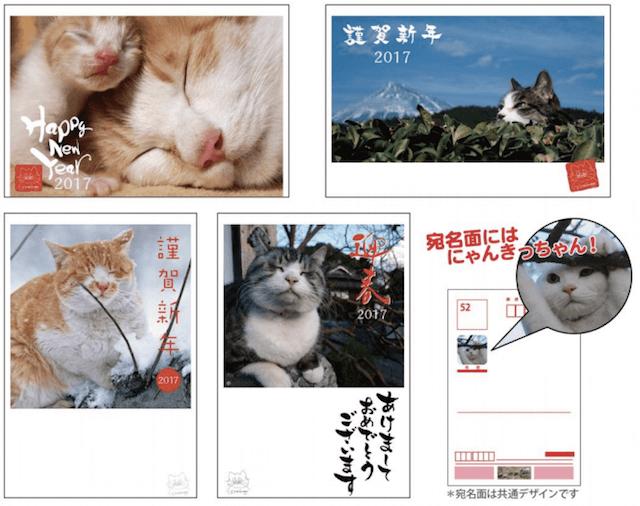 岩合光昭さんのネコ写真がデザインされた2017年の年賀ハガキ