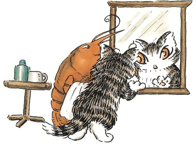 「猫のダヤン ふしぎ劇場」イメージ2