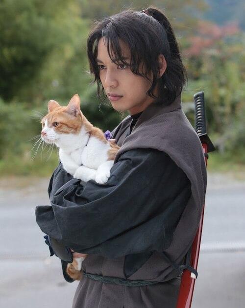 猫忍(ねこにん)の「父上」役は金時(きんとき)が演じます