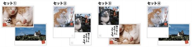 岩合光昭さんの年賀ハガキは2枚1セットで販売