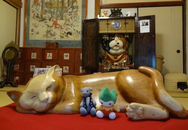 猫寺・雲林寺の本堂にもたくさんの猫が