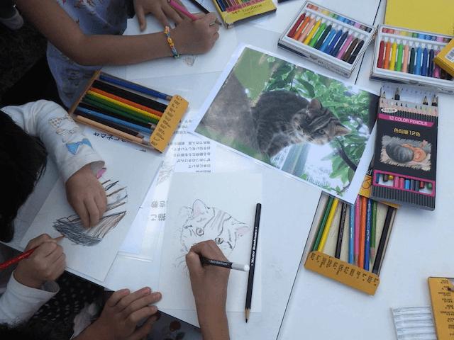 野生動物画家の岡田宗徳さんによるツシマヤマネコのお絵かき教室