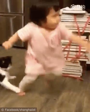 女の子を転ばせる猫の動画、バランスを崩す女の子