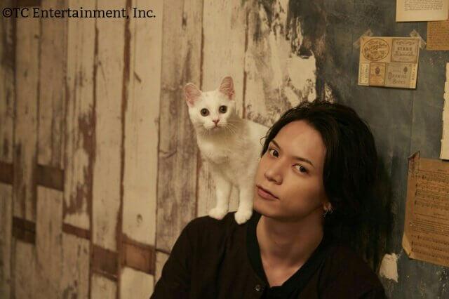 北村 諒×マンチカン(白猫)