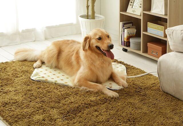 3Lサイズは大型犬でも使えるホットカーペット