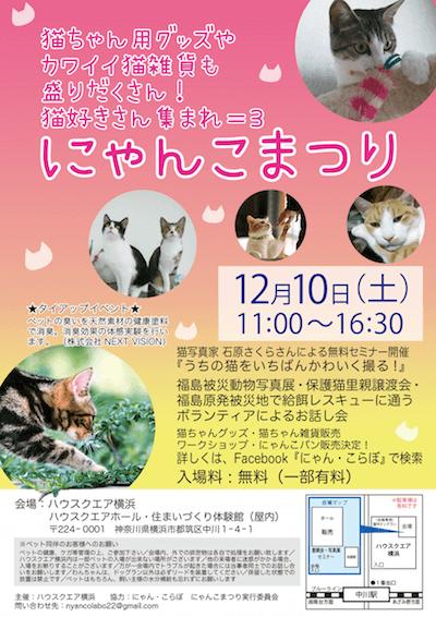 ハウスクエア横浜で開催される「にゃんこまつり」