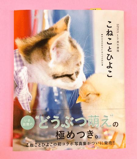 黒木康隆×SPMXによる写真集、「こねことひよこ」