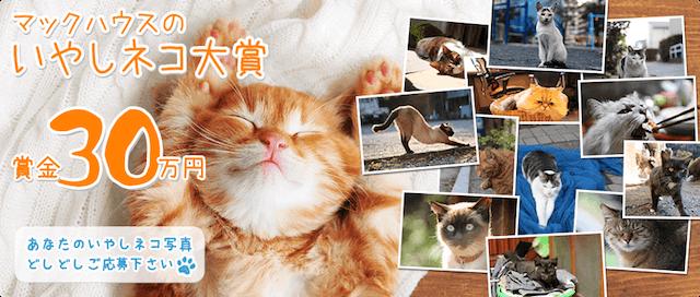 ニャンズワールドのマックハウスが開催している、賞金30万円の猫フォトコンテスト「いやしネコ大賞」