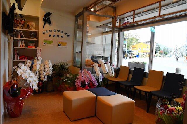 「動物病院京都 ねこの病院」の待合室