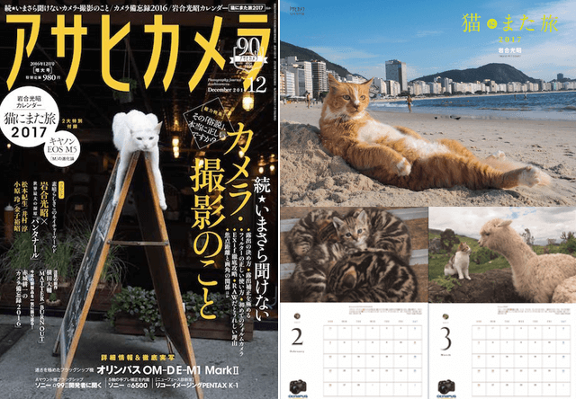 アサヒカメラの最新号に岩合さんの猫カレンダーが付いてくるニャ
