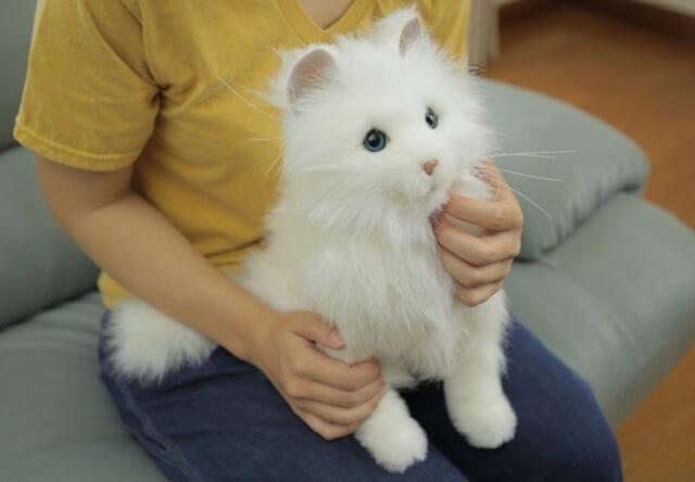 本物そっくりの可愛い猫ロボット「夢ねこプレミアム」が発売