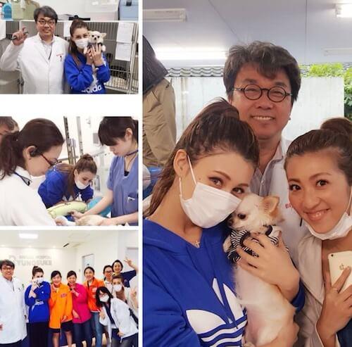 ダレノガレ明美さんが竜之介動物病院を来訪した時の写真