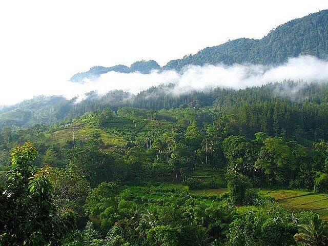 スリランカの世界自然遺産