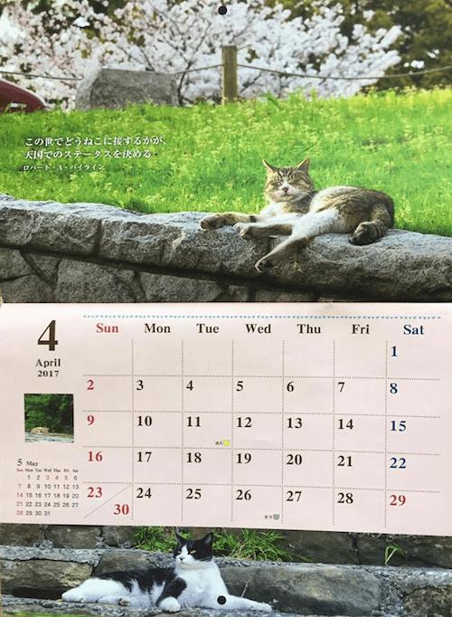 福岡ねこともの会が販売している2017年のチャリティー猫カレンダーの中身