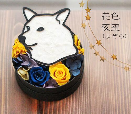 夜空×柴犬のプリザーブドフラワー「Animal Candy」