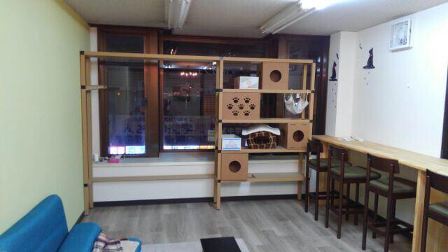 滋賀県大津市では初となる、膳所駅近くにある猫カフェ「ねこのおうち」