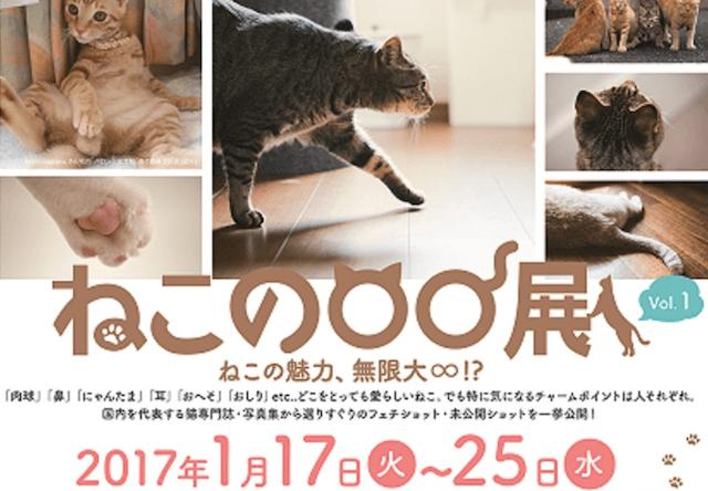 これはヤバイ!猫のパーツ別ベストショットが集う「ねこの〇〇展」
