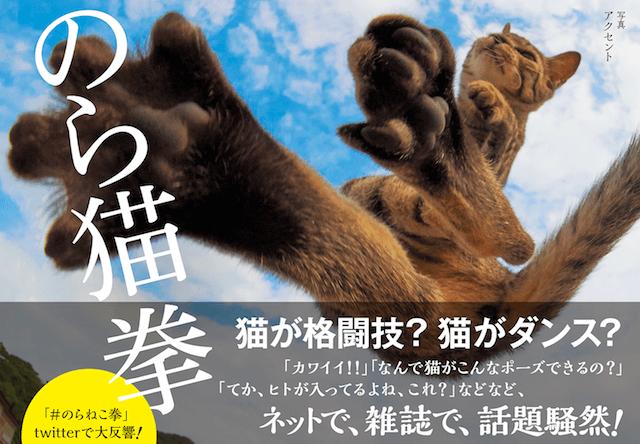 正に達人!拳法使いの野良猫ばかりを集めた写真集「のら猫拳」