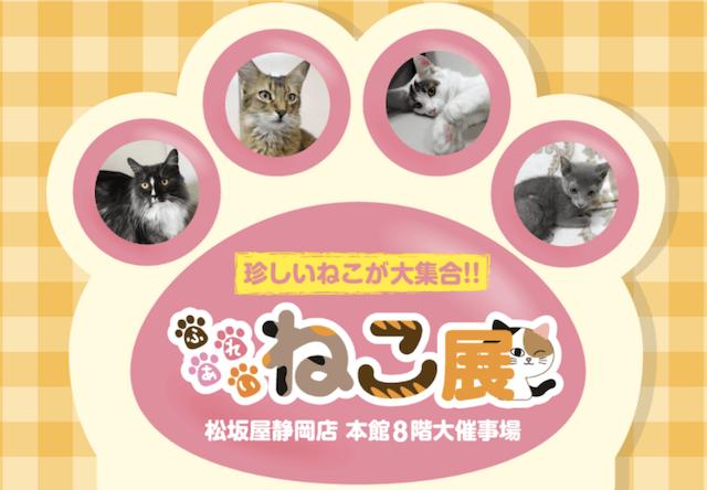 世界中の珍しい猫と触れ合える「ふれあい ねこ展」@松坂屋静岡店