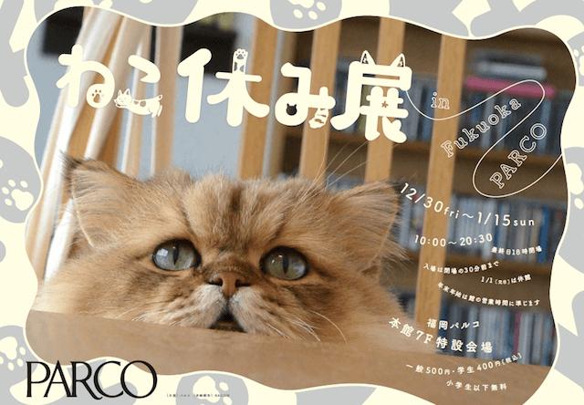 来場者10万人超えの猫イベント「ねこ休み展」福岡パルコで開催
