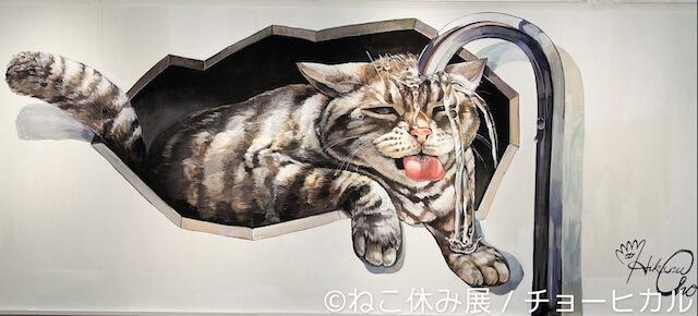チョーヒカルさんが描いた大人気スター猫「なごむ」の巨大作品