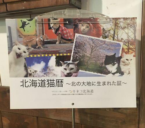 ツキネコ北海道 2017年 壁掛けカレンダー