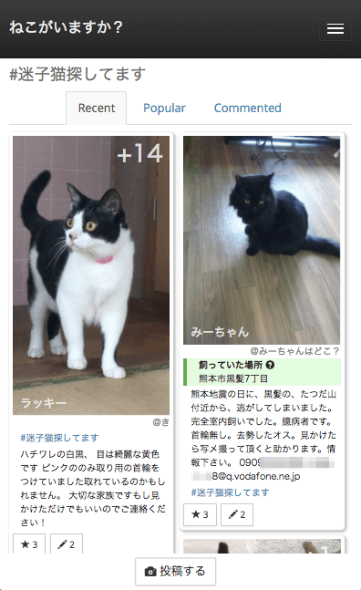 地域の猫情報を共有する「ねこでる」、登録された迷子猫の画面イメージ