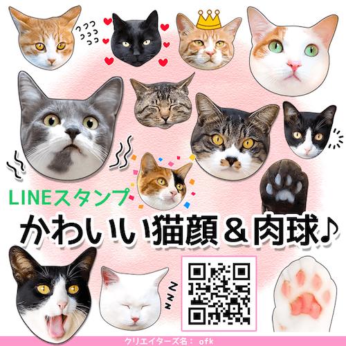 38種類の猫を収録したLINEスタンプ「かわいい猫顔&肉球♪」