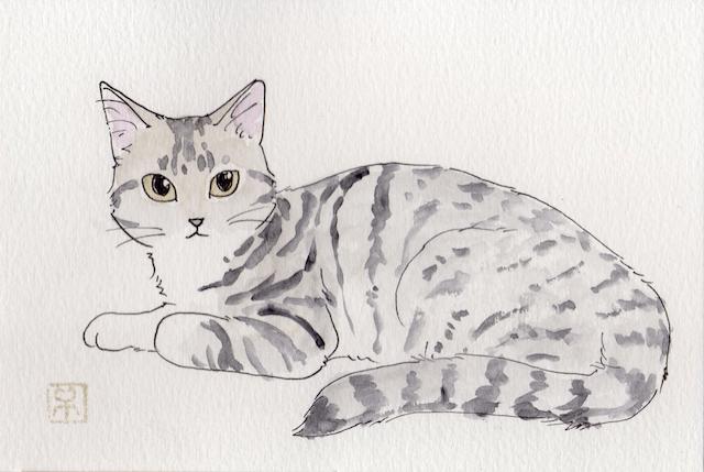 イラストレーターの岡田千夏さんによる、猫の似顔絵