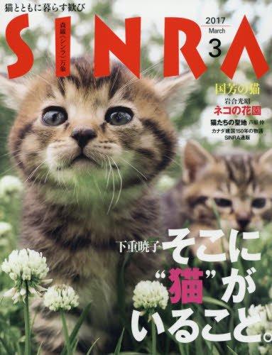 雑誌SINRA(シンラ)の最新号 猫特集