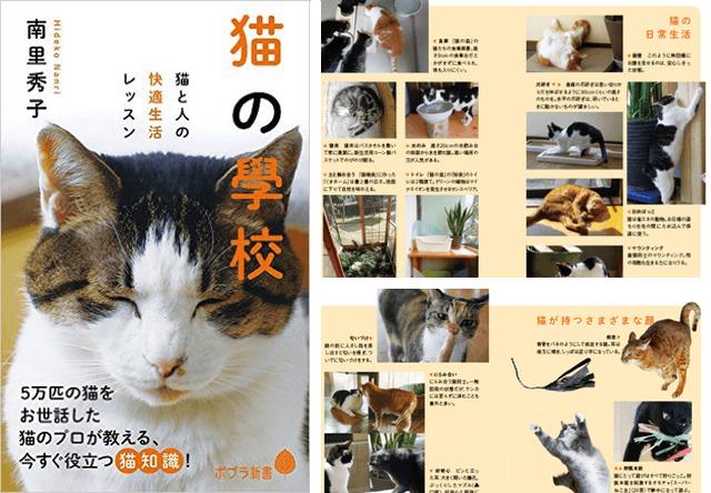 5万匹の猫をお世話してきた著者によるノウハウ本「猫の學校」