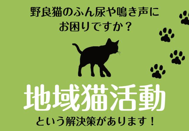 東京都の小金井市で、第2回 飼い主のいない猫対策セミナーが開催