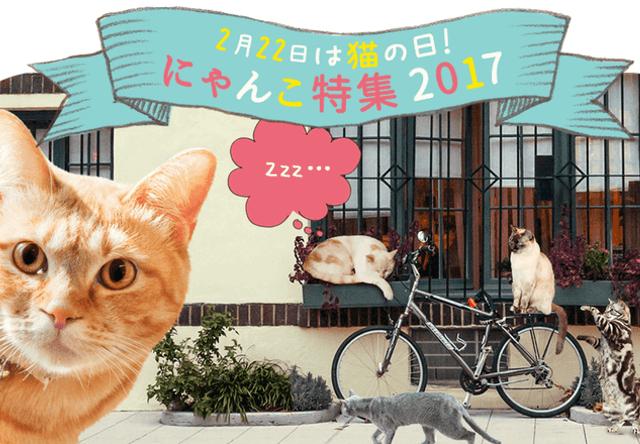 動画サービスのニコニコ、2/15まで猫コンテストを開催中
