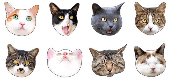 猫のLINEスタンプ「かわいい猫顔&肉球♪」のイメージ1