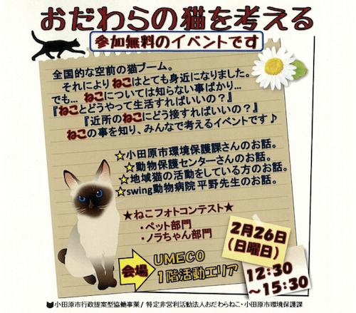 小田原市で開催予定のイベント「おだわらの猫を考える」