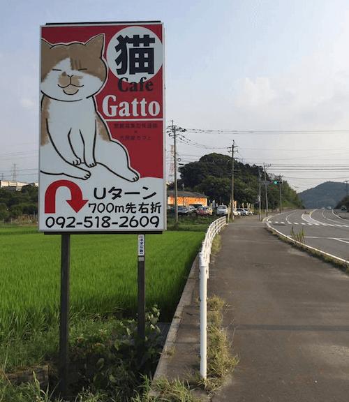 道路沿いにある保護猫カフェ「Cafe Gatto」の看板