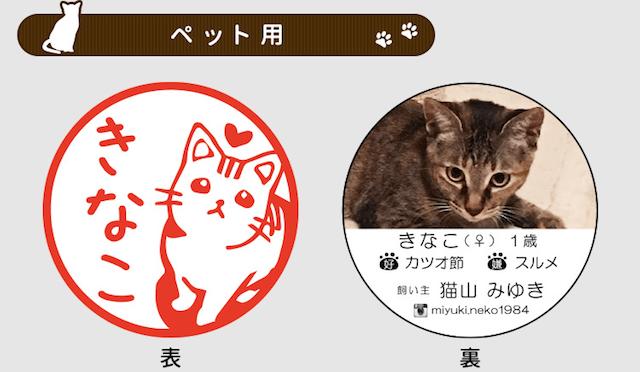 「ねこずかん ねこめいし」猫用の名刺のイメージ