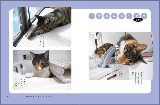 書籍「猫と田中」のスナップ写真1