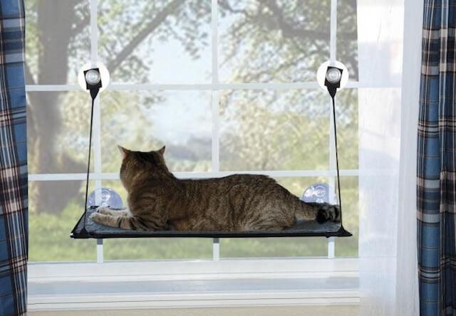 猫ベッド「EZ ウィンドウ マウント」で猫がくつろいでいる姿