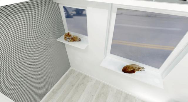 キャットステップ付きの窓から猫が外を眺められます