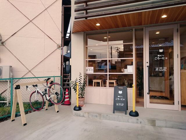 岐阜県羽島市の猫カフェ 「ごろーにゃ」