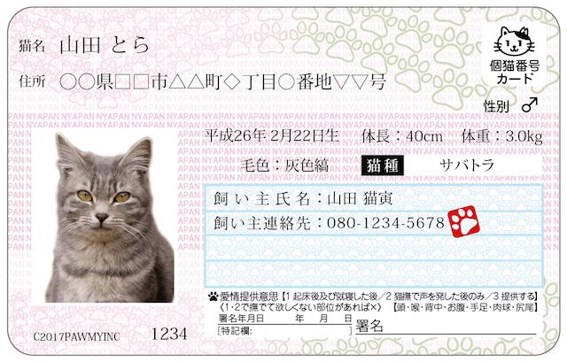 飼い猫の情報管理や迷子探しサポート機能などを備えたオリジナルIDカード、「マイニャンバーカード」