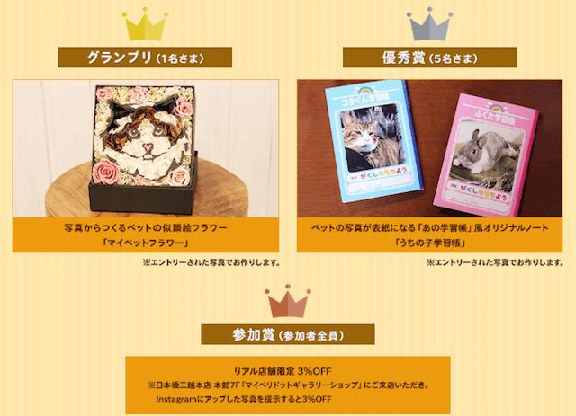 「アニマルバレンタイン フォトコンテスト」の賞品はペットの似顔絵フラワーや、ペットの写真が表紙になる「うちの子学習帳」