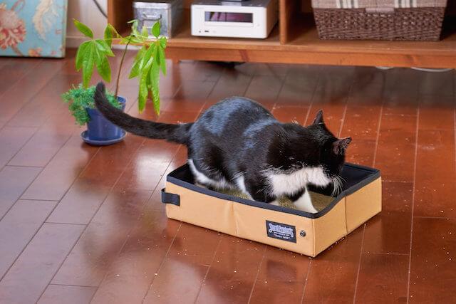 防水加工のため猫がおしっこしても漏れない「サンドボックス」