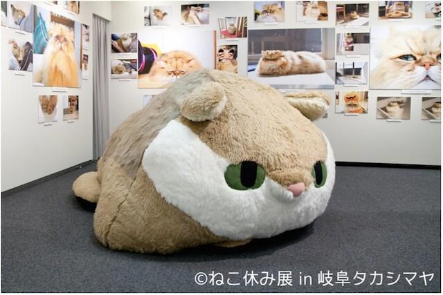 しょんぼり顔猫「ふーちゃん」の巨大ぬいぐるみ