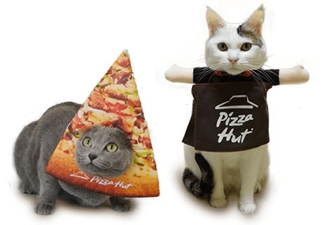 ピザハットの架空店舗「ピザキャット店」がニャンバサダーを募集中