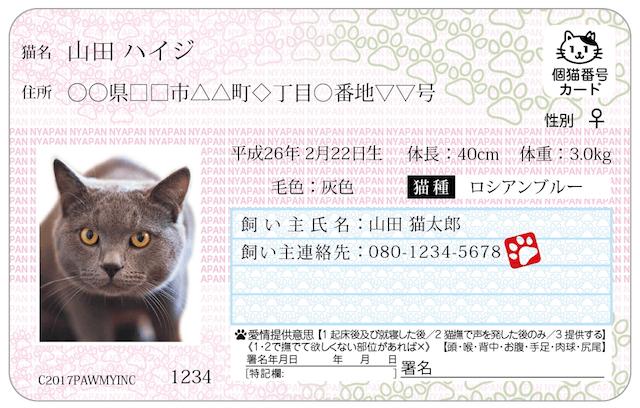愛猫の写真や名前、住所、品種、毛色などの特徴を記載したマイニャンバーカード