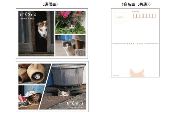岩合光昭×郵便局のコラボ猫切手セット第2弾、ポストカード