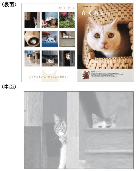 岩合光昭×郵便局のコラボ猫切手セット第2弾、ポストカードイメージ